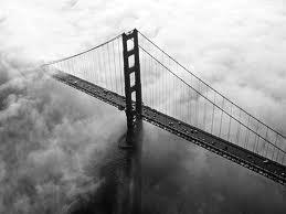 Visualization is the bridge